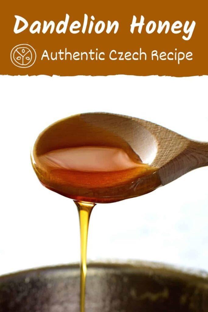 dandelion honey czech pampeliskovy med